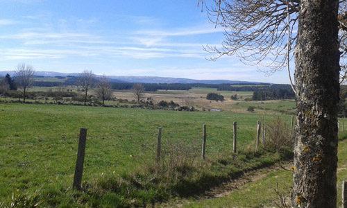 Gîte rural Lou Saltret en Lozère en région Occitanie : vue des alentours