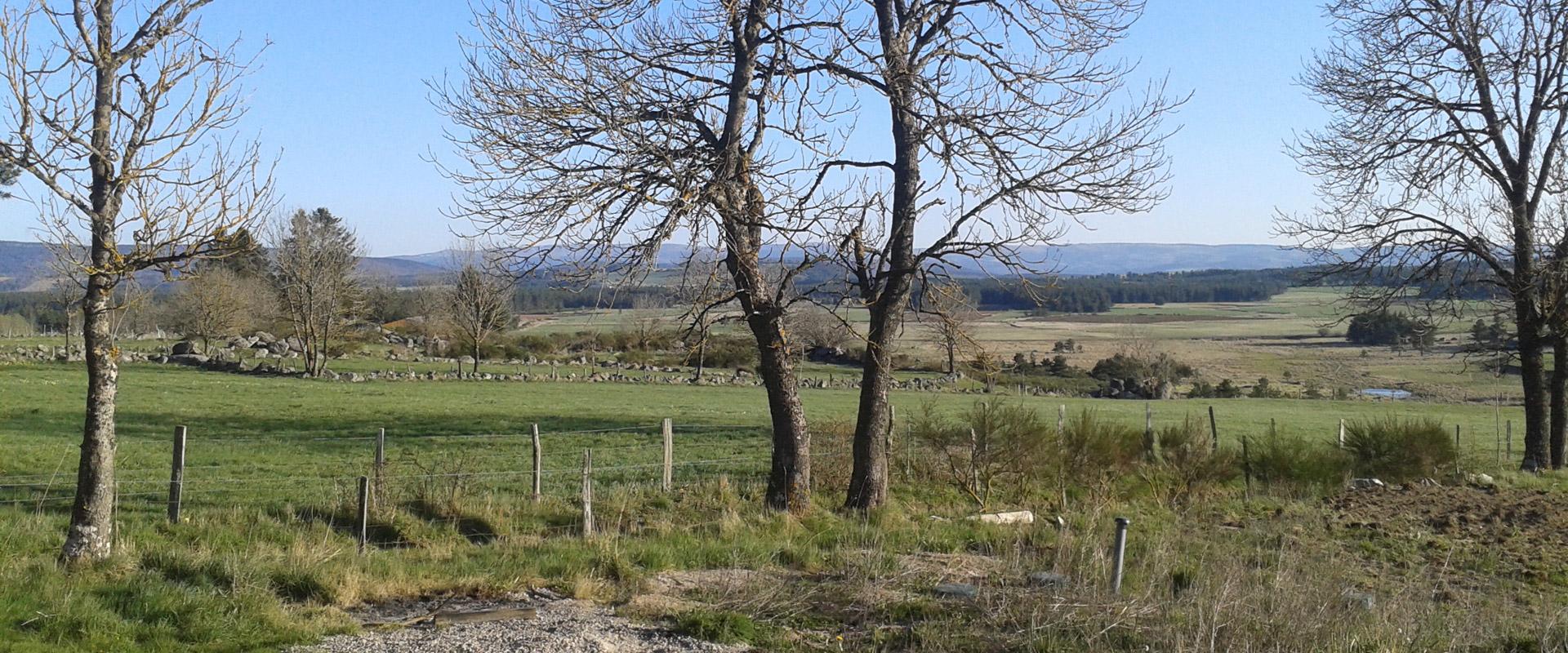 Gîte rural Lou Saltret : vue dégagée sur la plaine de Montbel en Lozère