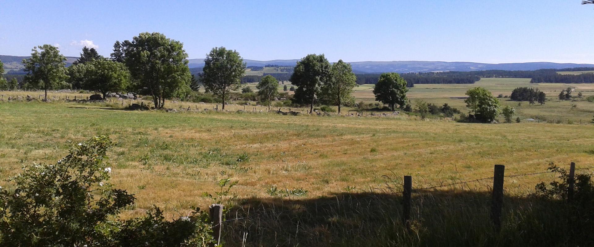 Vue de la plaine de Montbel situé à proximité du gîte Lou Saltret en Lozère