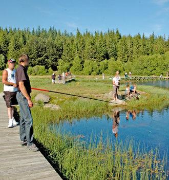 Vue de l'étang de Barrandon dont une partie est ouverte à la pêche situé à quelques minutes du gîte rural Lou Saltret en Lozère